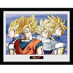 DRAGON BALL Z - Collector Print 30X40 - Group 155774  Posters
