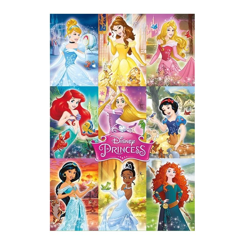 DISNEY PRINCESS - Poster 61X91 - Collage 170123  Posters