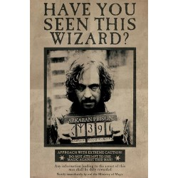 HARRY POTTER - Poster 61x91 - Wanted Serius Black 170117  Posters