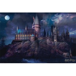 HARRY POTTER - Poster 61x91 - Hogwarts 170114  Posters