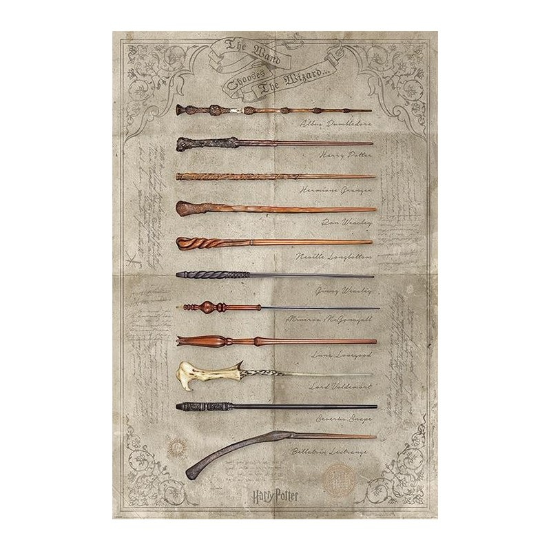 HARRY POTTER - Poster 61x91 - The Wand chooses the Wizard 170110  Posters
