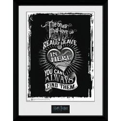 HARRY POTTER - Collector Print 30X40 - Love 153297  Posters