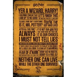 HARRY POTTER - Poster 61X91 - Quotes 152981  Posters