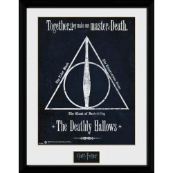 HARRY POTTER - Collector Print 30X40 - Deathly Hallows 151382  Posters