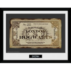 HARRY POTTER - Collector Print 30X40 - Ticket 151378  Posters