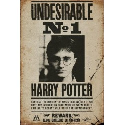 HARRY POTTER - Poster 61X91 - Undesirable N° 1 151372  Posters