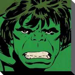MARVEL COMICS - Canvas 40X40 '38mm' - HULK Close-Up 148232  Frames