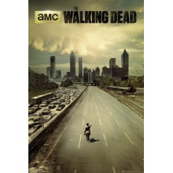 WALKING DEAD - Poster 61X91 - City 146822  Posters