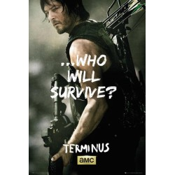 WALKING DEAD - Poster 61X91 - Daryl Survive 146817  Posters