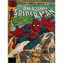 MARVEL COMICS - Canvas 30X40 '18mm' - Spider-Man Chameleon 169102  Ingelijst