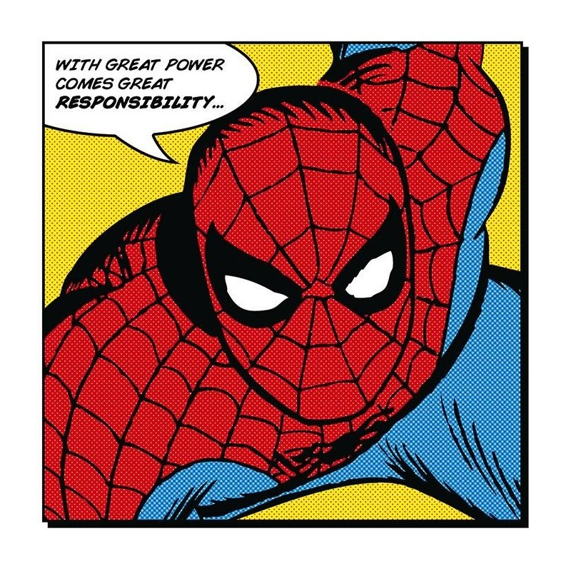 SPIDERMAN - Canvas 40X40 '18mm' - Quote 169094  Frames