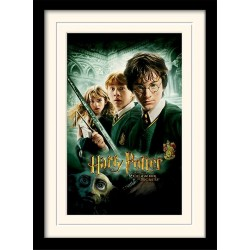 HARRY POTTER - Mounted & Framed 30X40 Print - Chamber of Secrets 171755  Frames