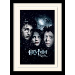 HARRY POTTER - Mounted & Framed 30X40 Print - Prisoner of Azkaban 171756  Ingelijst