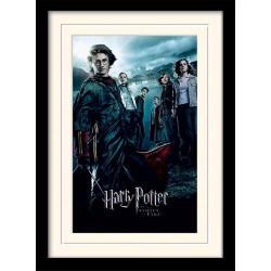 HARRY POTTER - Mounted & Framed 30X40 Print - Goblet of Fire 171757  Frames
