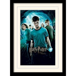 HARRY POTTER - Mounted & Framed 30X40 Print - Order of The Phoenix 171758  Frames