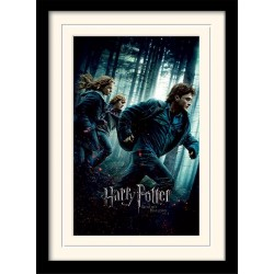 HARRY POTTER - Mounted & Framed 30X40 Print - Deathly Hallows Part 1 171759  Frames