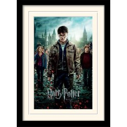 HARRY POTTER - Mounted & Framed 30X40 Print - Deathly Hallows Part 2 171760  Frames