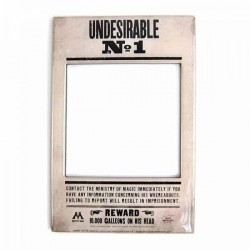 HARRY POTTER - Photo Frame Magnet 10 X 15 - Undesirable N° 1 172368  Harry Potter