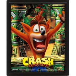 CRASH BANDICOOT - 3D Lenticular Poster 26X20 - Mask Power Up 174190  Lenticular Posters
