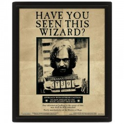 HARRY POTTER - 3D Lenticular Poster 26X20 - Potter / Sirius - Lensvormige poster 174196  Posters