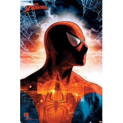 SPIDER-MAN - Poster 61X91 - Protector of the City 178772  Posters