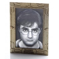 HARRY POTTER - Holopane 50 Moodlamp: Harry 167491  Deco, Wand, Kamer & Nacht Lampen