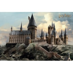 HARRY POTTER - Poster 61X91 - Hogwarts Day 179018  Posters