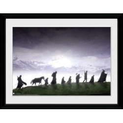 THE LORD OF THE RINGS - Collector Print 30X40 - Fellowship 179039  Collector Print Canvas
