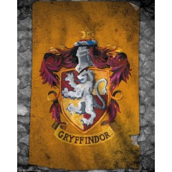 Harry Potter - Mini Poster 40X50 - Gryffindor Flag 179062  Posters
