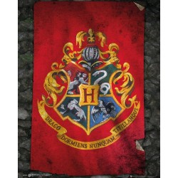 HARRY POTTER - Mini Poster 40X50 - Hogwarts Flag 179063  Vlaggen