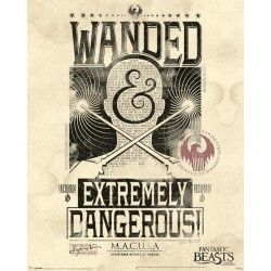 FANTASTIC BEASTS - Mini Poster 40X50 - Extremely Dangerous 179088  Posters