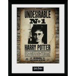HARRY POTTER - Collector Print 30X40 - Undesirable No1 179147  Posters