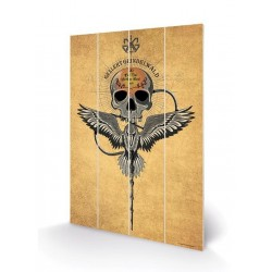 FANTASTIC BEASTS - Wood Print 40X59 - Grindelwalds Elements 179394  Houten Canvas