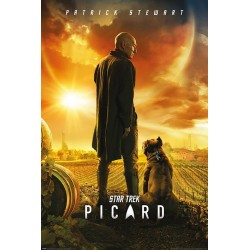 STAR TREK - Poster 61X91 - Picard - Number One 180552  Posters