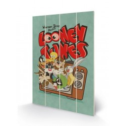 LOONEY TUNES - Houten wandbord 40X59 - Retro TV