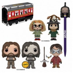 HARRY POTTER - Hogwart Express Mystery Box 'Funko' 175534  Harry Potter