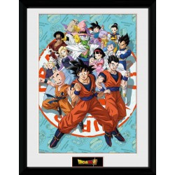 DRAGON BALL SUPER - Collector Print 30X40 - Universe Group 181027  Posters