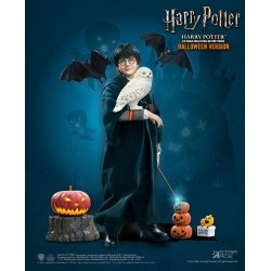 HARRY POTTER - Movie Figure 1/6 Harry Potter Halloween Limited - 30cm 181720  Harry Potter Figurines
