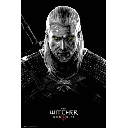 THE WITCHER - Toxicity Poisoning - Poster '61x91.5cm' 188822  Posters