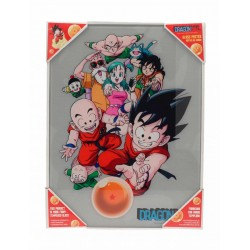 DRAGON BALL - GLASS PRINT - Characters - 30X40 Cm