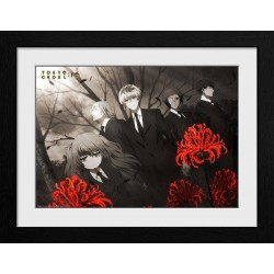 TOKYO GHOUL : RE - Red Flowers - Collector Print '30x40cm' 191418  Ingelijst