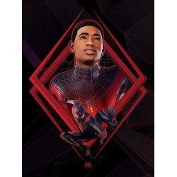 SPIDER-MAN MILES MORALES - Be Greater - Canvas 60x80cm 191840  Canvas