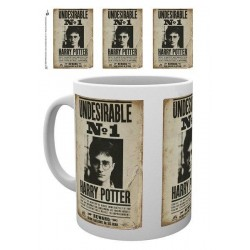 HARRY POTTER - Undesirable No1 - Beker 300ml