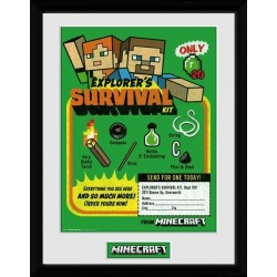 MINECRAFT - Collector Print 30X40 - Survival Kit 163922  Collector Print Canvas