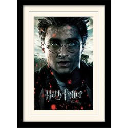 HARRY POTTER - Mounted & Framed 30X40 Print - Deathly Hallows Part2 193274  Posters