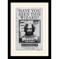 HARRY POTTER - Mounted & Framed 30X40 Print - Sirius Wanted 193276  Posters