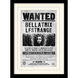 HARRY POTTER - Mounted & Framed 30X40 Print - Bellatrix Wanted 193277  Posters