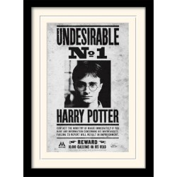 HARRY POTTER - Mounted & Framed 30X40 Print - Undesirable No1 193278  Posters