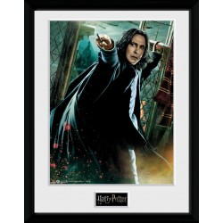 HARRY POTTER - Collector Print 30x40cm