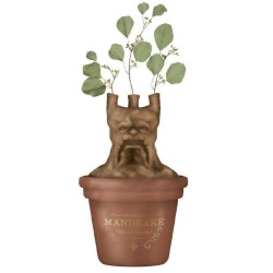 HARRY POTTER - Mandrake - Table Top Vase